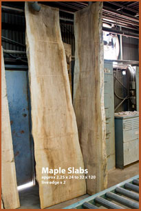 western big leaf maple slab